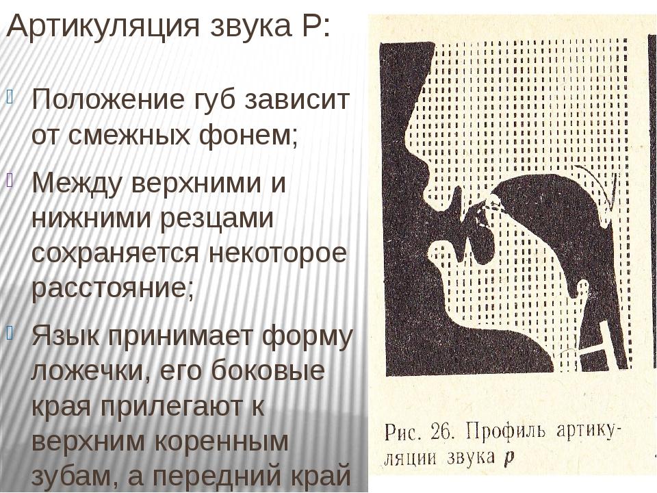 Артикуляция звука Р: Положение губ зависит от смежных фонем; Между верхними и нижними резцами сохраняется некоторое расстояние; Язык принимает форм...