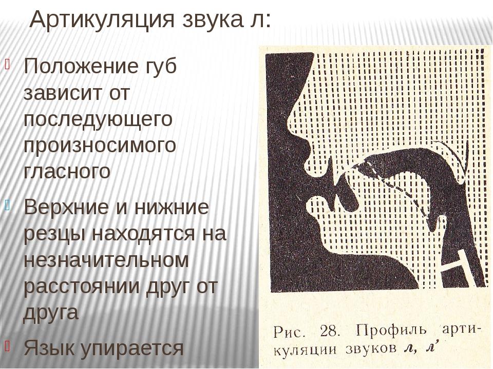 Артикуляция звука л: Положение губ зависит от последующего произносимого гласного Верхние и нижние резцы находятся на незначительном расстоянии дру...