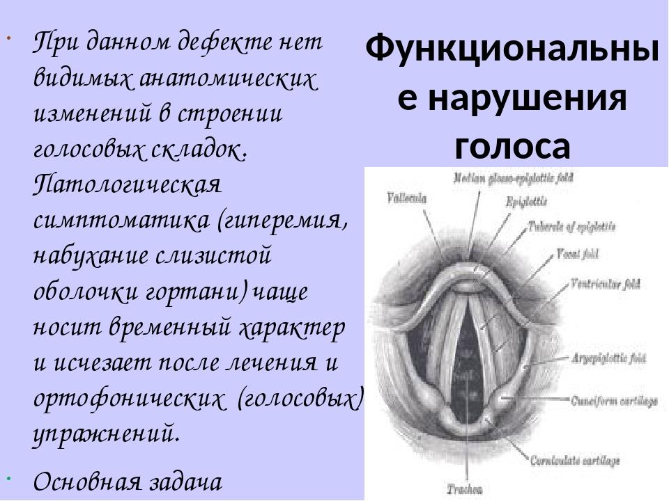 Функциональные нарушения голоса При данном дефекте нет видимых анатомических изменений в строении голосовых складок. Патологическая симптоматика (г...