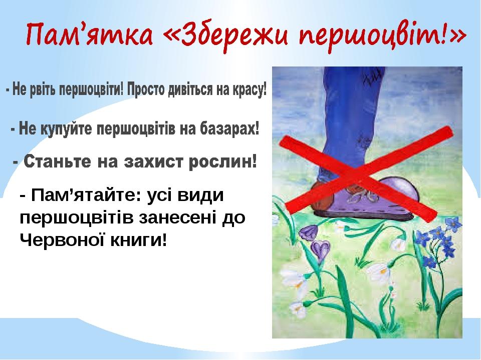 - Пам'ятайте: усі види першоцвітів занесені до Червоної книги!