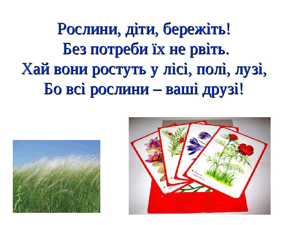 Рослини, діти, бережіть! Без потреби їх не рвіть. Хай вони ростуть у лісі, полі, лузі, Бо всі рослини – ваші друзі!