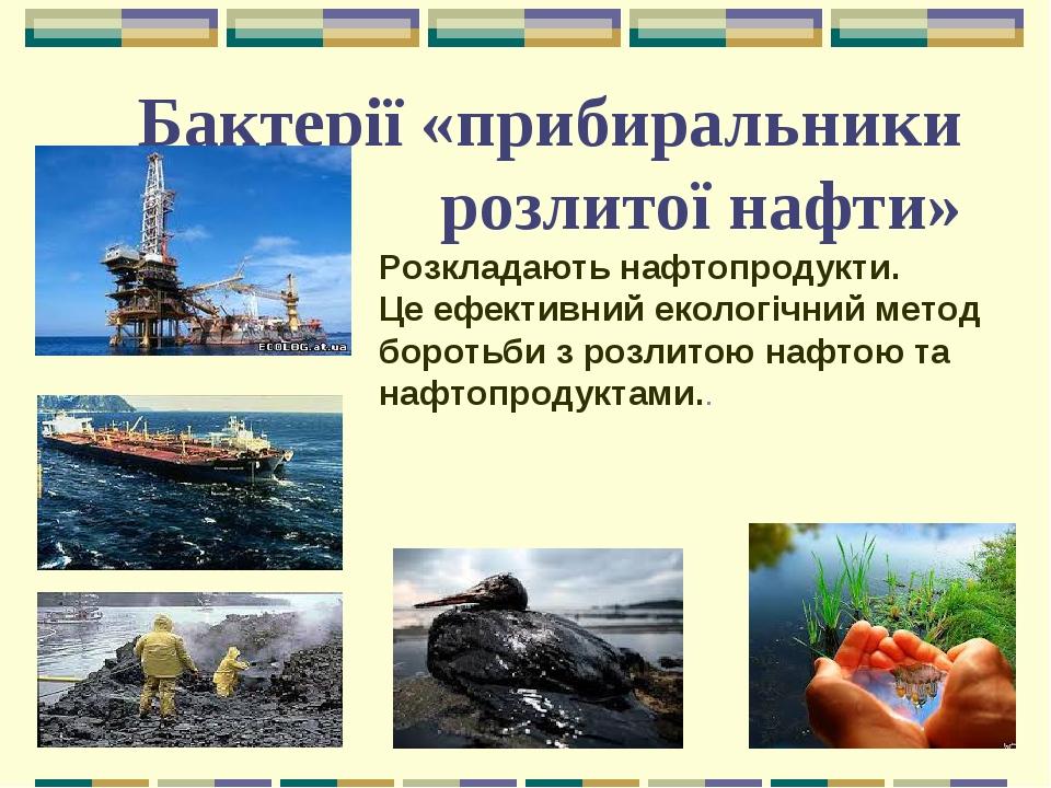 Бактерії «прибиральники розлитої нафти» Розкладають нафтопродукти. Це ефективний екологічний метод боротьби з розлитою нафтою та нафтопродуктами..