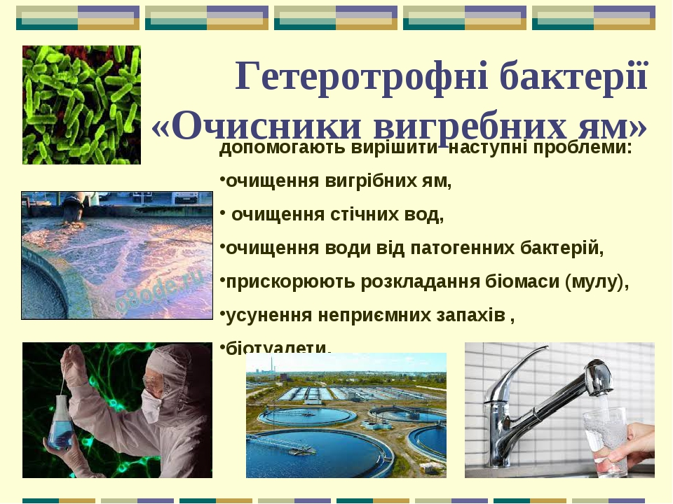 Гетеротрофні бактерії «Очисники вигребних ям» допомогають вирішити наступні проблеми: очищення вигрібних ям, очищення стічних вод, очищення води ві...