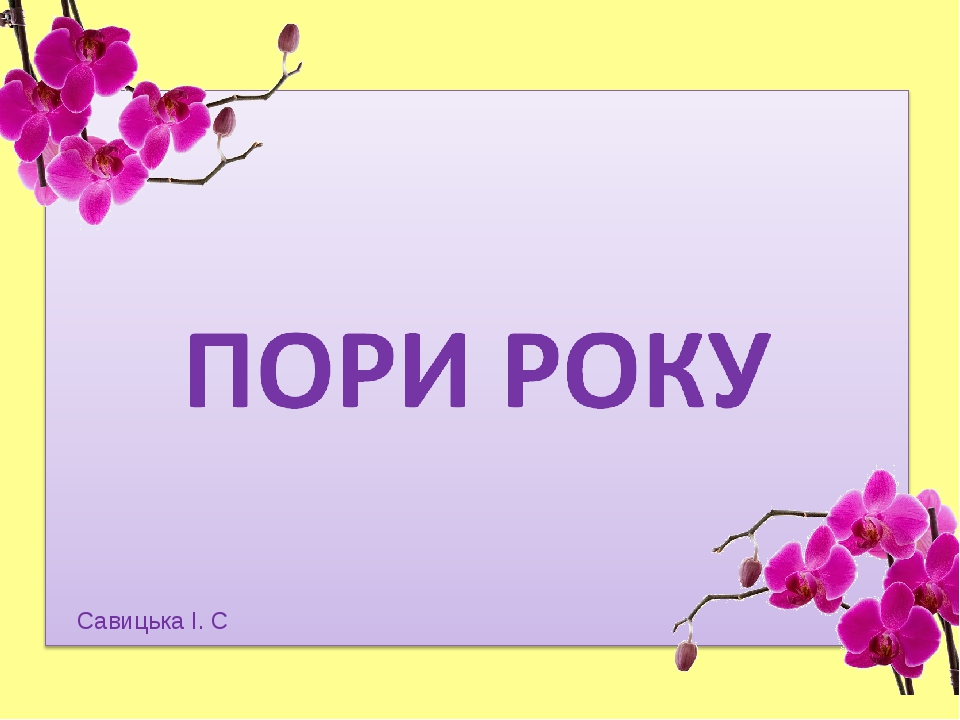 Савицька І. С