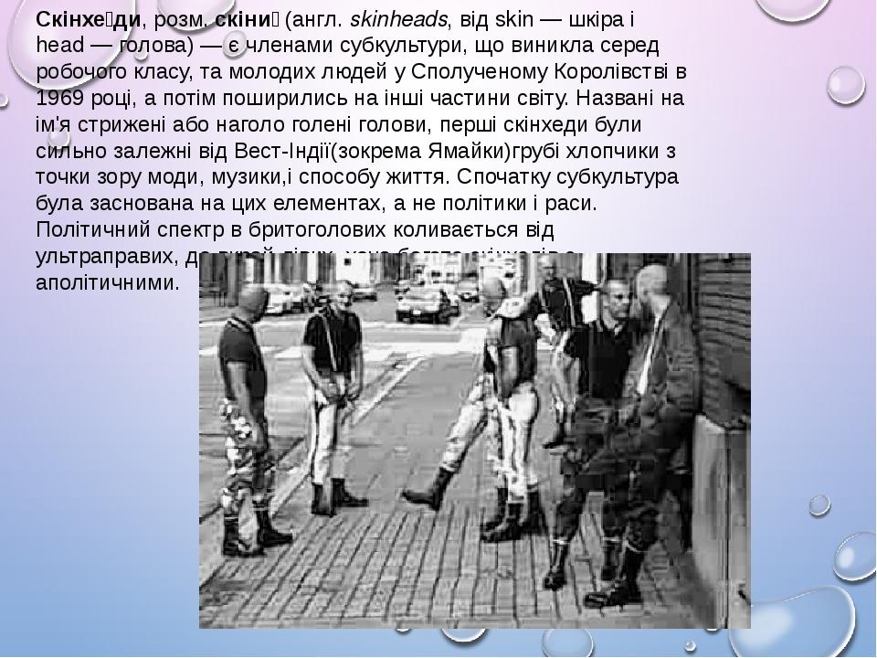 Скінхе́ди, розм.скіни́ (англ.skinheads, від skin—шкіраі head—голова)— є членами субкультури, що виникла серед робочого класу, та молодих лю...