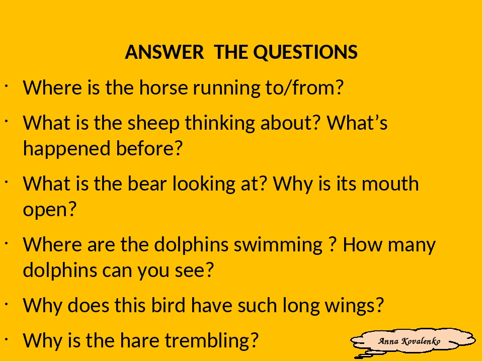 ANSWER THE QUESTIONS Where is the horse running to/from? What is the sheep thinking about? What's happened before? What is the bear looking at? Why...