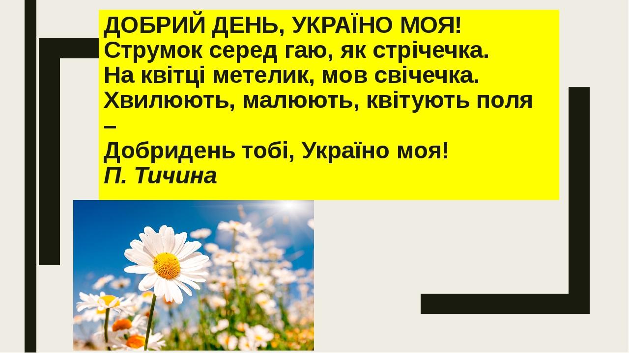ДОБРИЙ ДЕНЬ, УКРАЇНО МОЯ! Струмок серед гаю, як стрічечка. На квітці метелик, мов свічечка. Хвилюють, малюють, квітують поля – Добридень тобі, Укр...