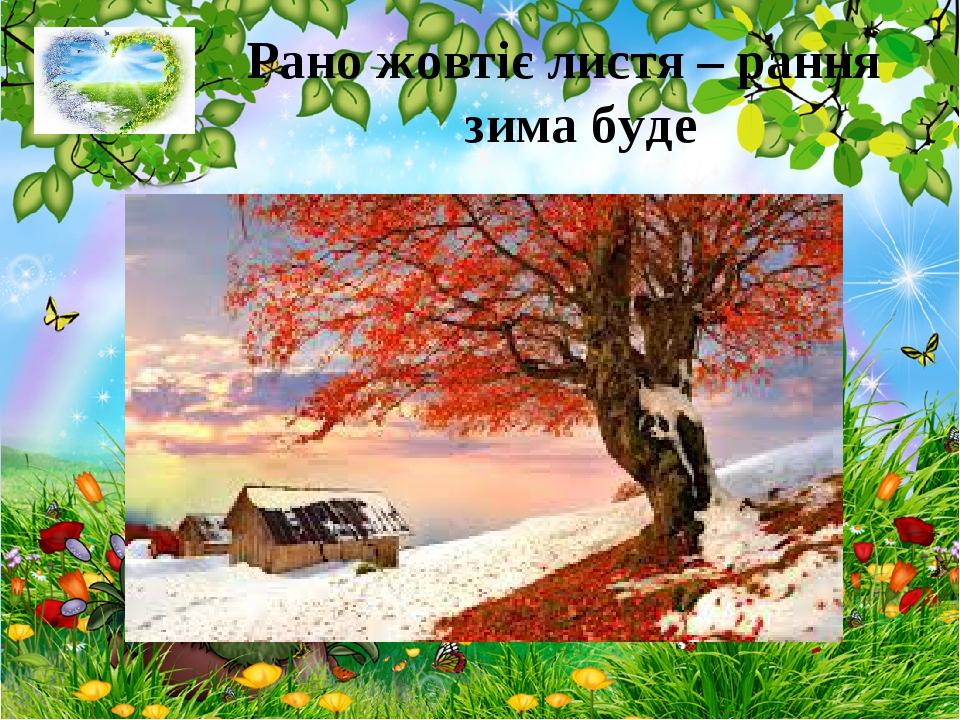 Рано жовтіє листя – рання зима буде