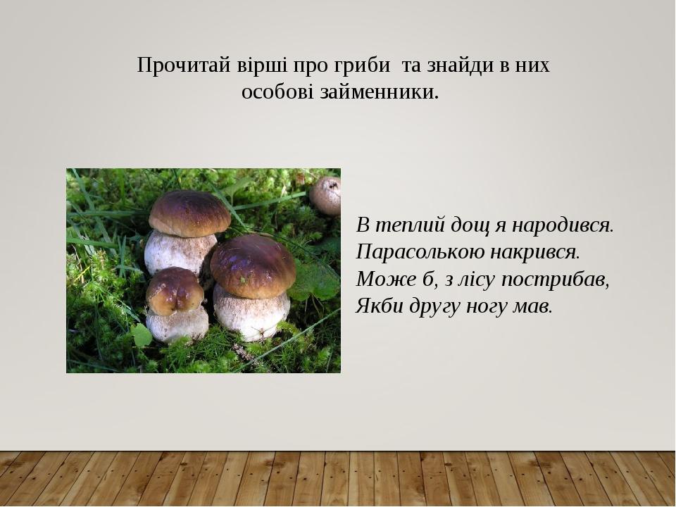 Прочитай вірші про гриби та знайди в них особові займенники. В теплий дощ я народився. Парасолькою накрився. Може б, з лісу пострибав, Якби другу ...