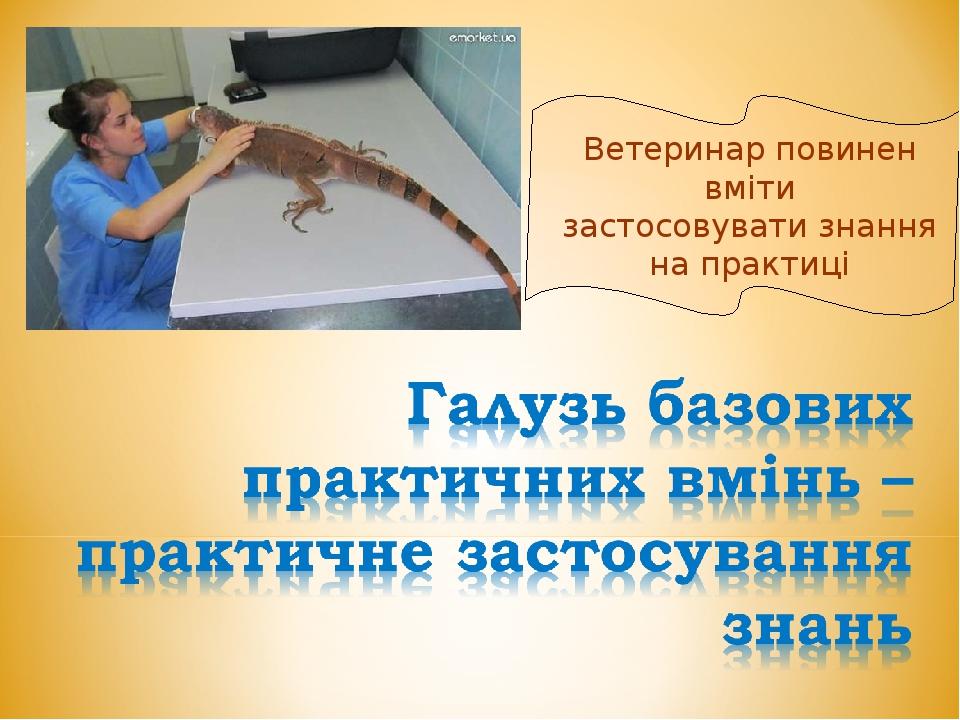Ветеринар повинен вміти застосовувати знання на практиці