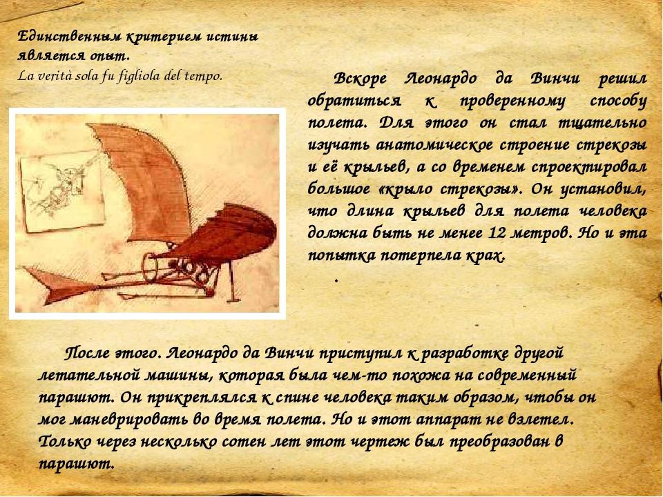 К этому периоду жизни Леонардо относятся одни из первых схематических анатомических зарисовок поперечных срезов ноги. Впоследствии Леонардо создал ...