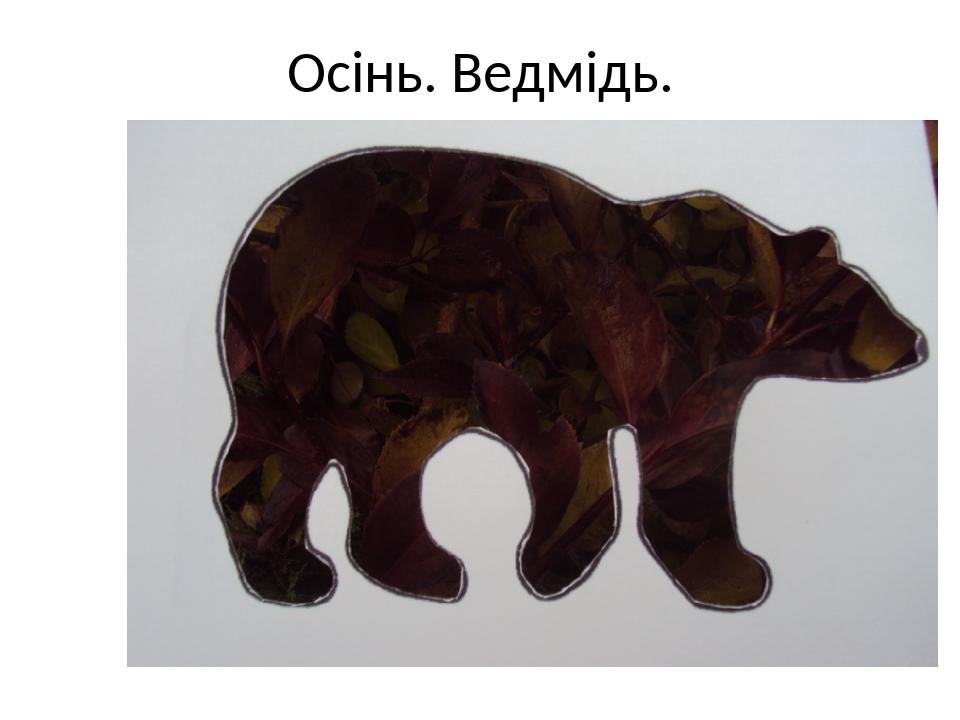 Осінь. Ведмідь.