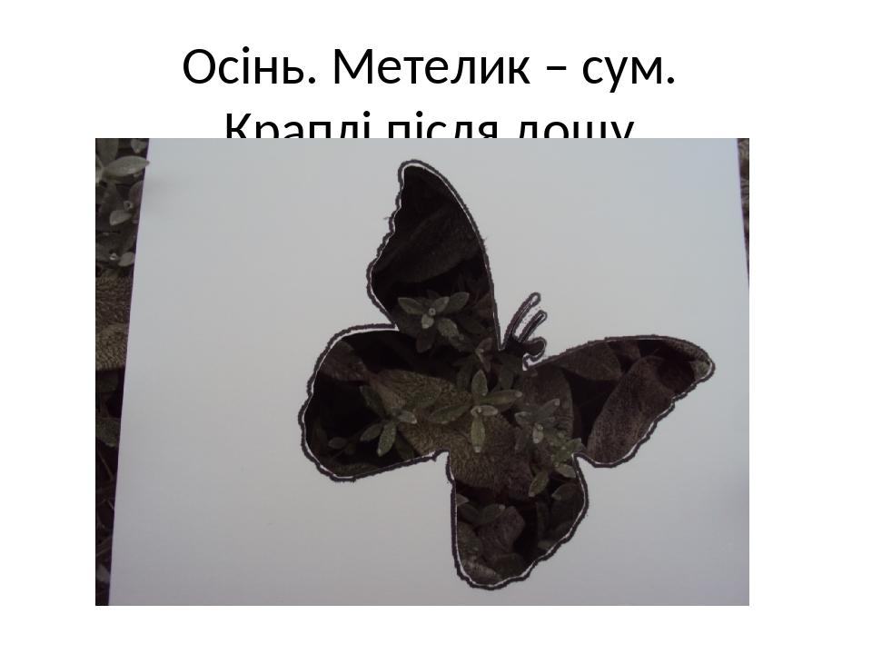 Осінь. Метелик – сум. Краплі після дощу.