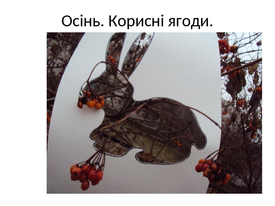 Осінь. Корисні ягоди.