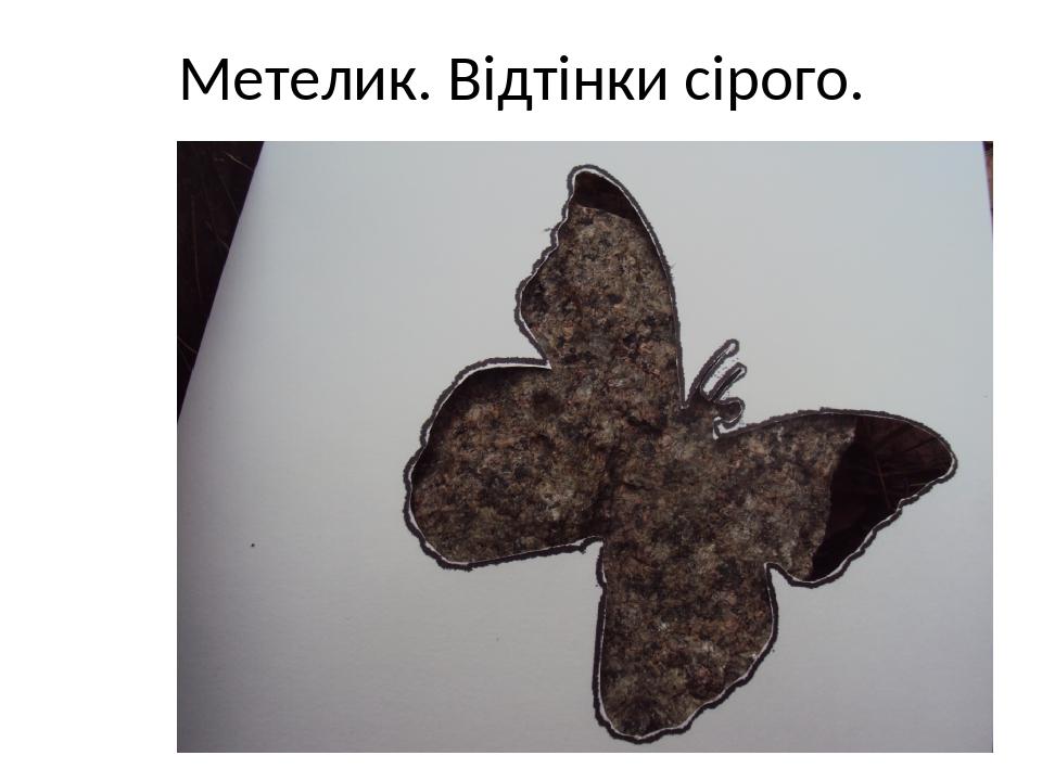 Метелик. Відтінки сірого.