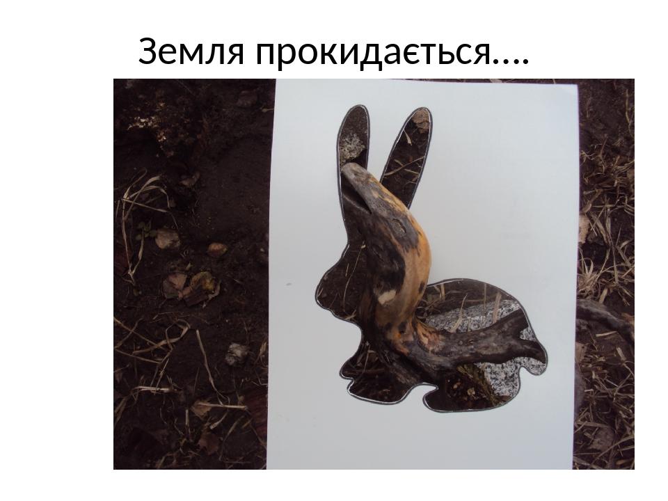 Земля прокидається….