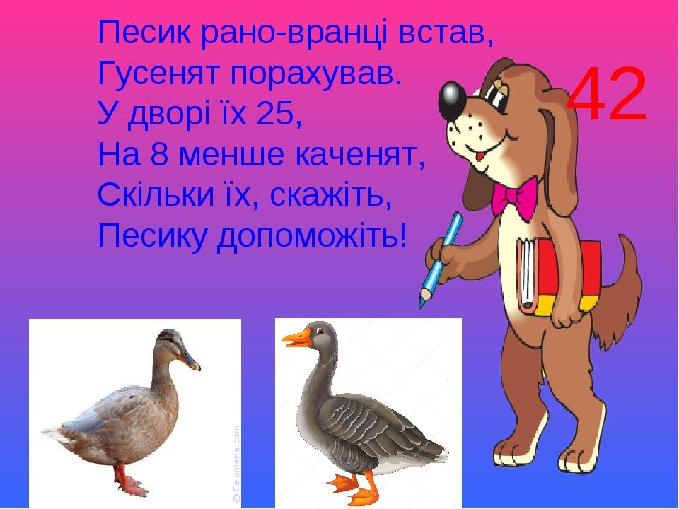 Песик рано-вранці встав, Гусенят порахував. У дворі їх 25, На 8 менше каченят, Скільки їх, скажіть, Песику допоможіть! 42