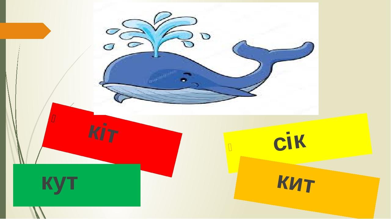 кіт кут сік кит