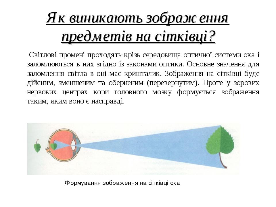 Як виникають зображення предметів на сітківці? Світлові промені проходять крізь середовища оптичної системи ока і заломлюються в них згідно із зако...