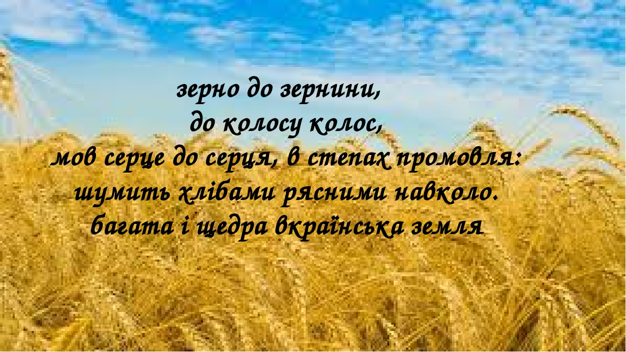 зерно до зернини, до колосу колос, мов серце до серця, в степах промовля: шумить хлібами рясними навколо. багата і щедра вкраїнська земля