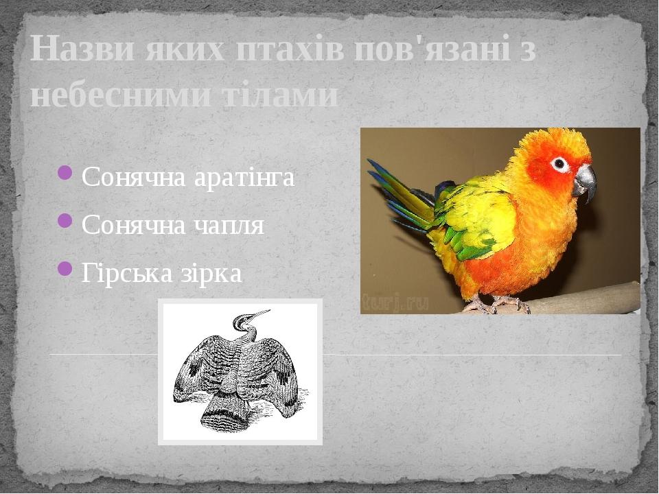 Назви яких птахів пов'язані з небесними тілами Сонячна аратінга Сонячна чапля Гірська зірка