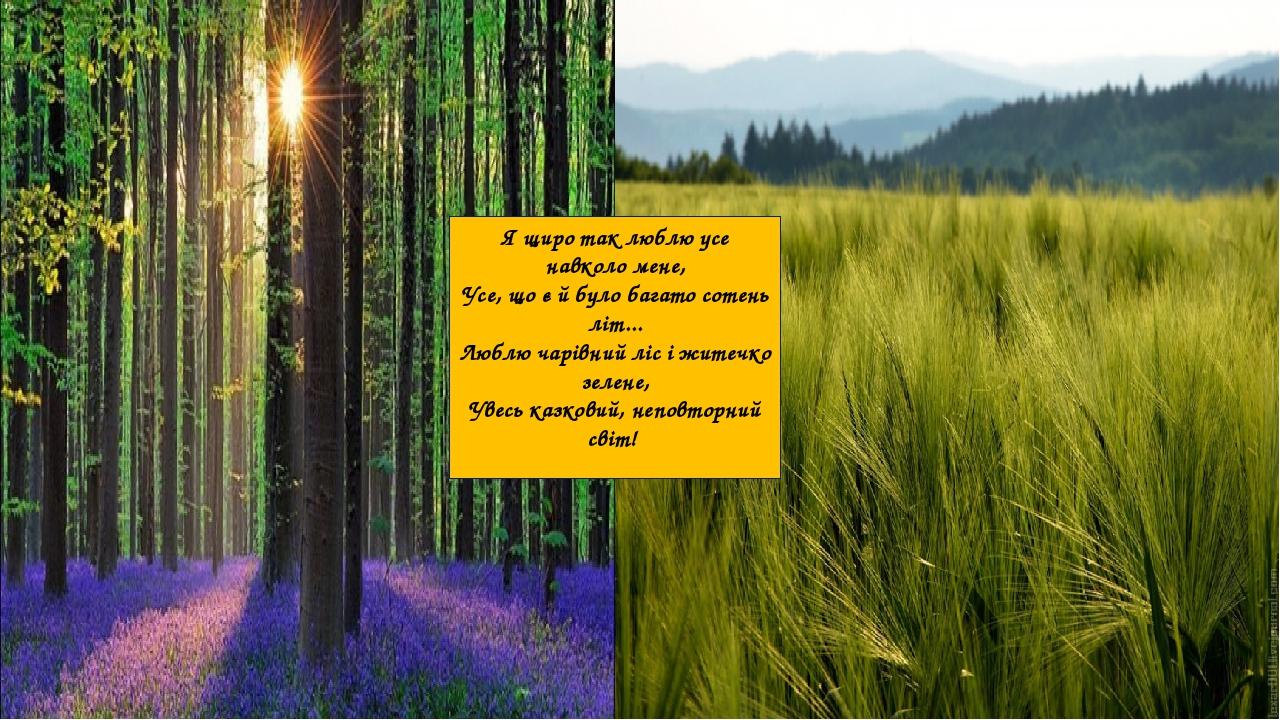 Я щиро так люблю усе навколо мене, Усе, що є й було багато сотень літ... Люблю чарівний ліс і житечко зелене, Увесь казковий, неповторний світ!