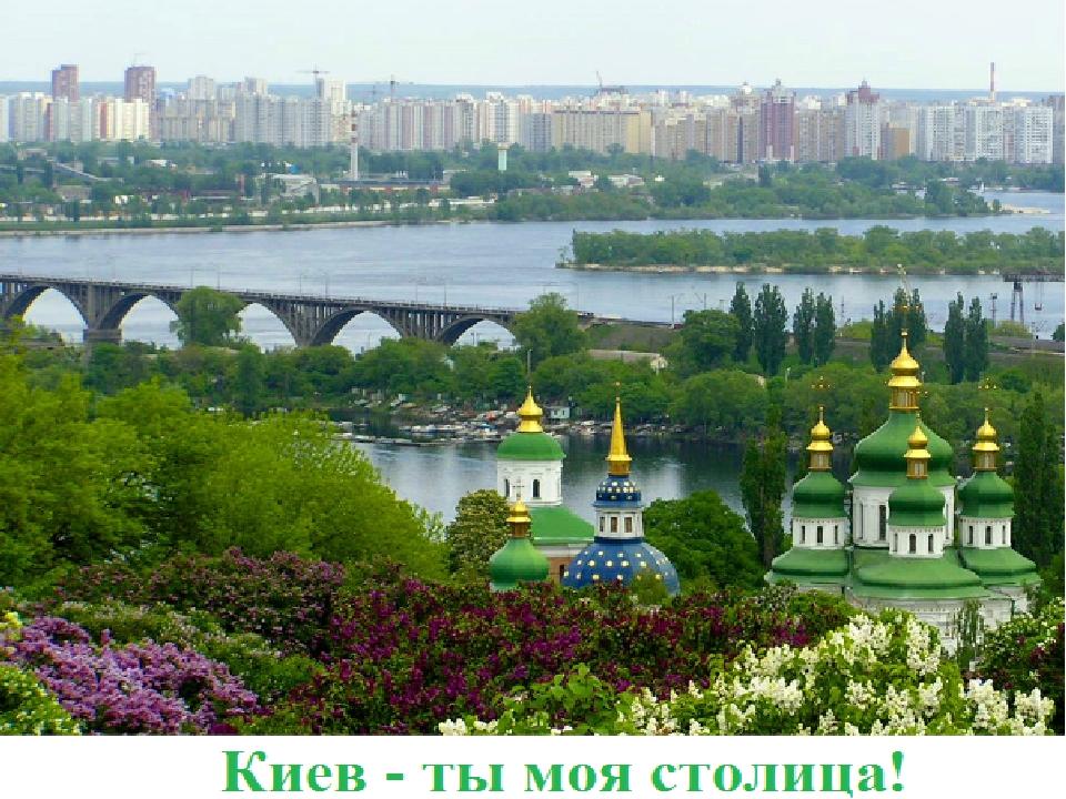 Київ – столиця України широколистяних лісах, що в околицях Києва, тваринний світ дуже різноманітний. Можна зустріти дикого кабана та косуль. Полюют...