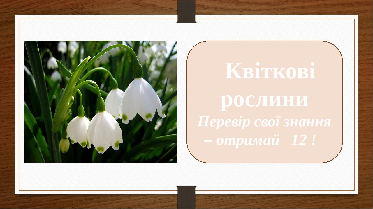 Квіткові рослини Перевір свої знання – отримай 12 !