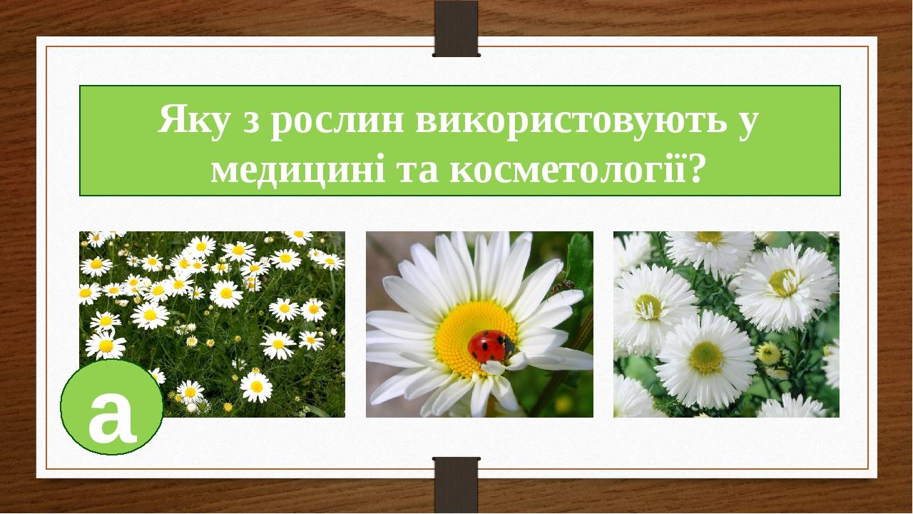 Яку з рослин використовують у медицині та косметології? а
