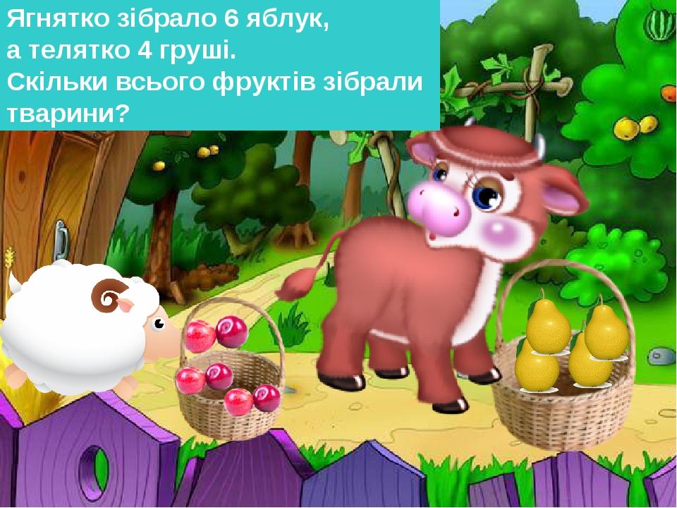 Ягнятко зібрало 6 яблук, а телятко 4 груші. Скільки всього фруктів зібрали тварини?