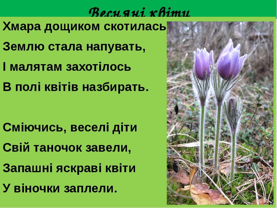 Весняні квіти Хмара дощиком скотилась, Землю стала напувать, І малятам захотілось В полі квітів назбирать. Сміючись, веселі діти Свій таночок завел...