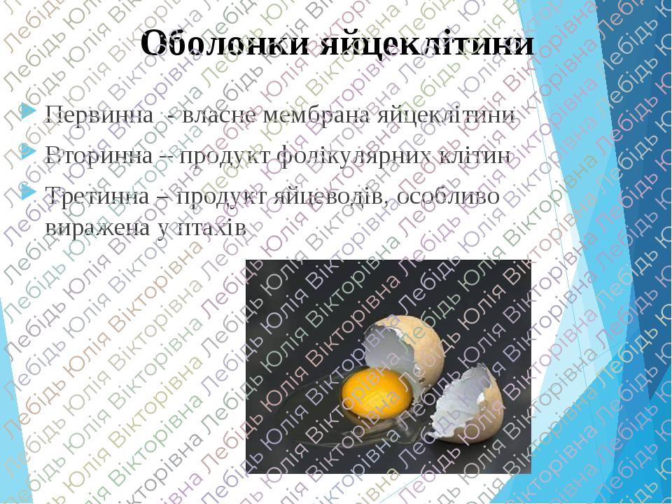 Оболонки яйцеклітини Первинна - власне мембрана яйцеклітини Вторинна – продукт фолікулярних клітин Третинна – продукт яйцеводів, особливо виражена ...