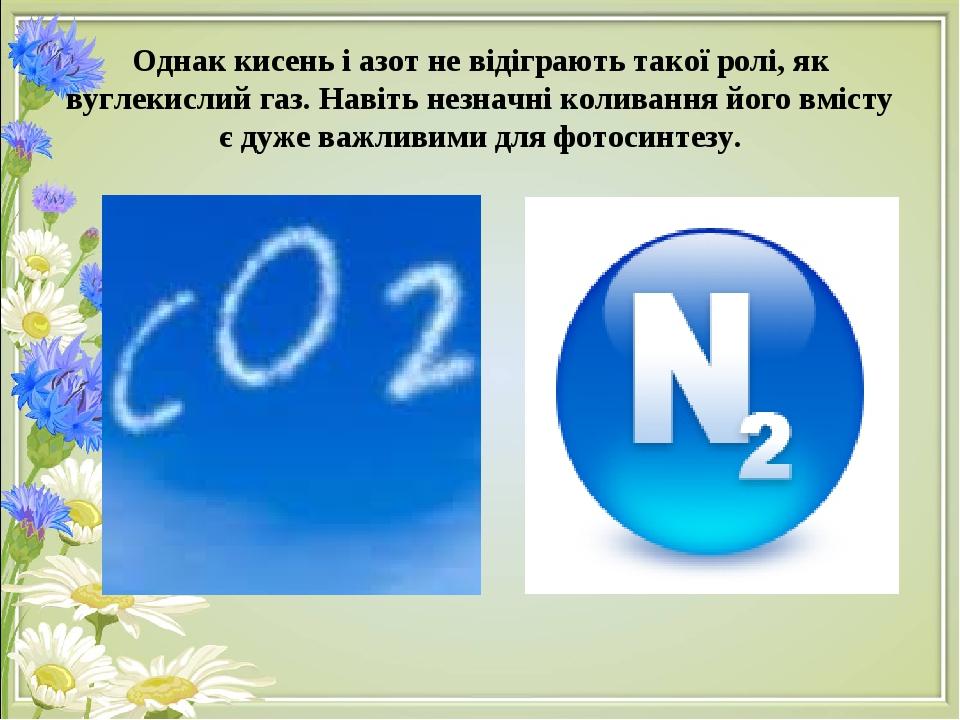 Однак кисень і азот не відіграють такої ролі, як вуглекислий газ. Навіть незначні коливання його вмісту є дуже важливими для фотосинтезу.
