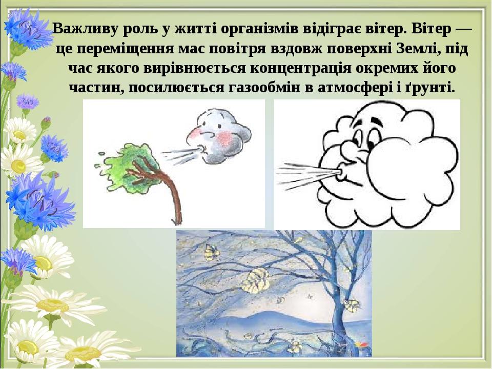 Важливу роль у житті організмів відіграє вітер. Вітер — це переміщення мас повітря вздовж поверхні Землі, під час якого вирівнюється концентрація о...