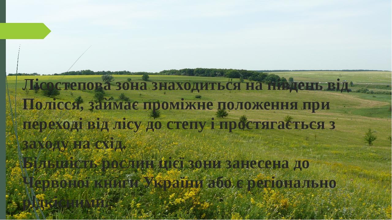 Лісостепова зона знаходиться на південь від Полісся, займає проміжне положення при переході від лісу до степу і простягається з заходу на схід. Біл...