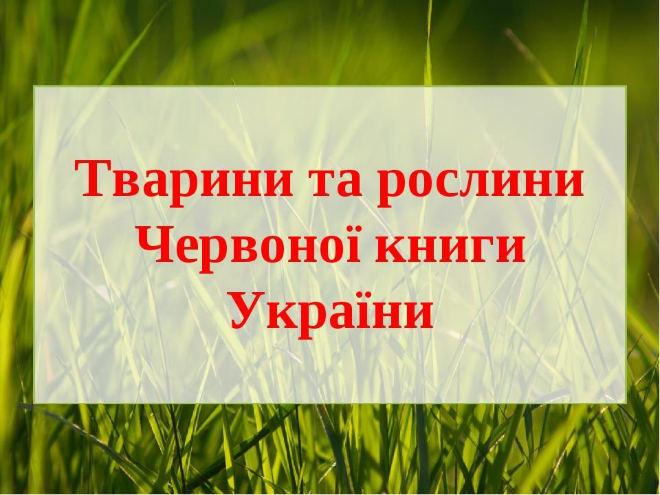Тварини та рослини Червоної книги України