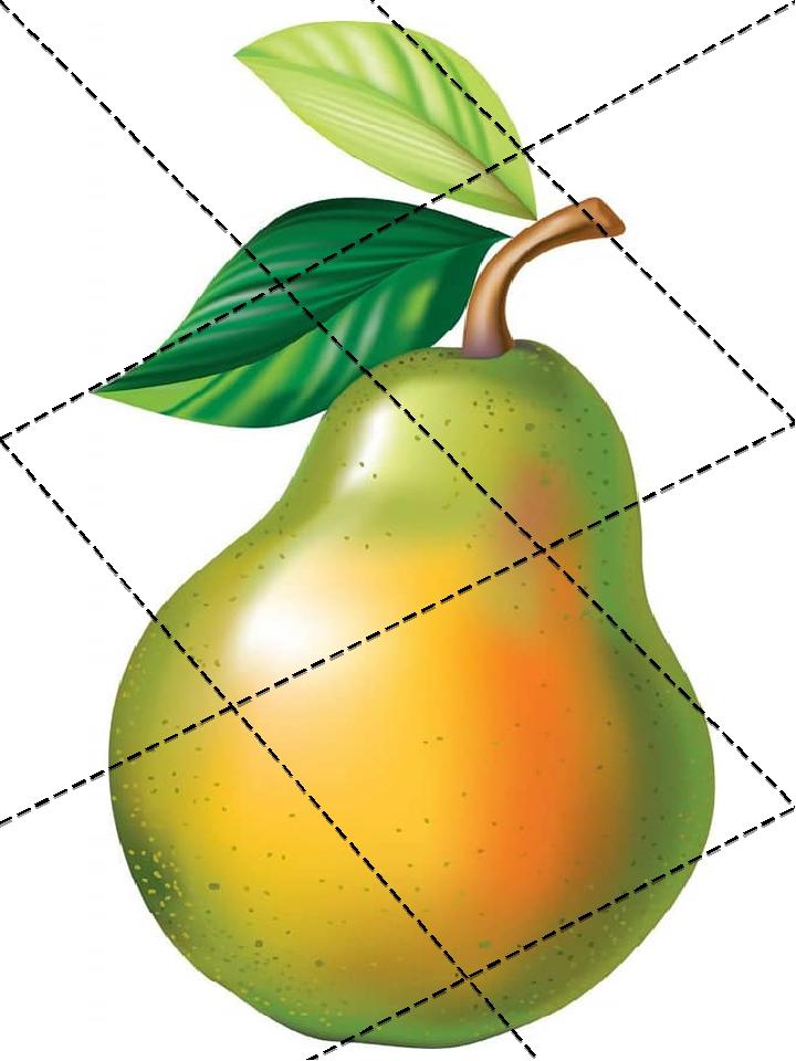 Дидактична гра «Склади фрукти»