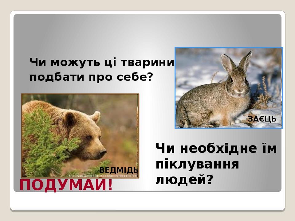 ПОДУМАЙ! Чи можуть ці тварини подбати про себе? Чи необхідне їм піклування людей? ВЕДМІДЬ ЗАЄЦЬ