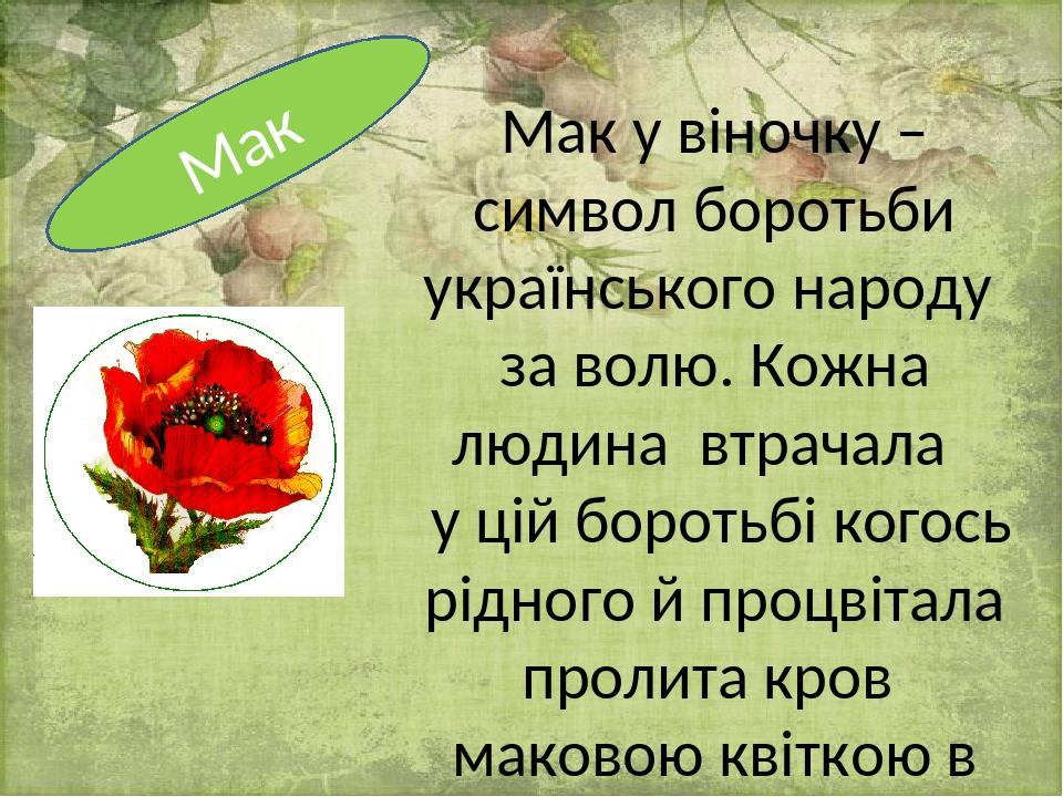 Мак у віночку – символ боротьби українського народу за волю. Кожна людина втрачала у цій боротьбі когось рідного й процвітала пролита кров маковою ...