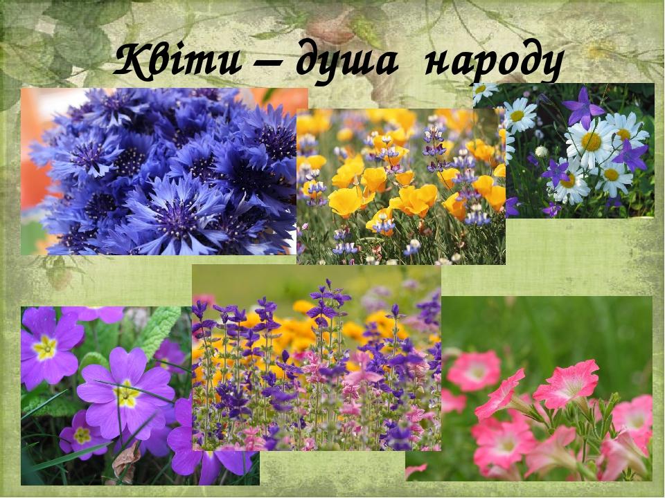 Квіти – душа народу