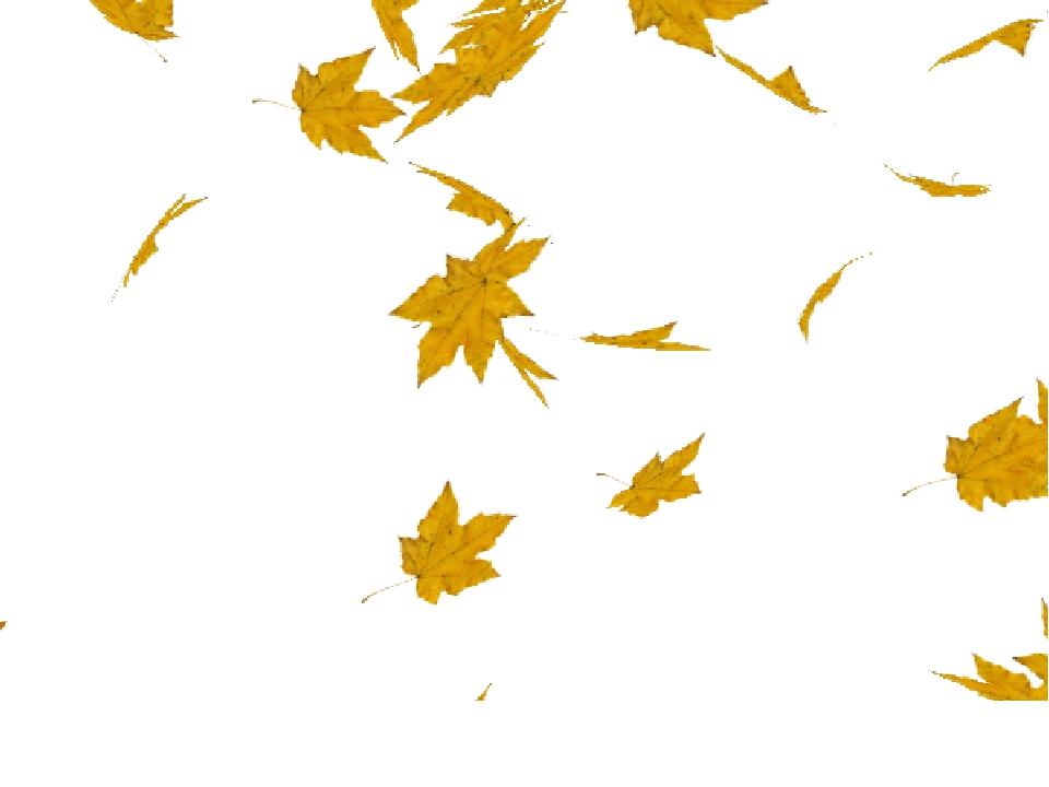 ситтинприт девушка кленовый лист анимация на прозрачном фоне дениз только