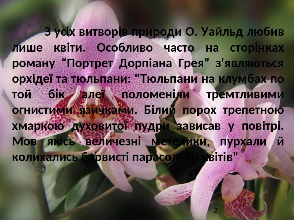 """З усіх витворів природи О. Уайльд любив лише квіти. Особливо часто на сторінках роману """"Портрет Дорпіана Грея"""" з'являються орхідеї та тюльпани: """"Тю..."""