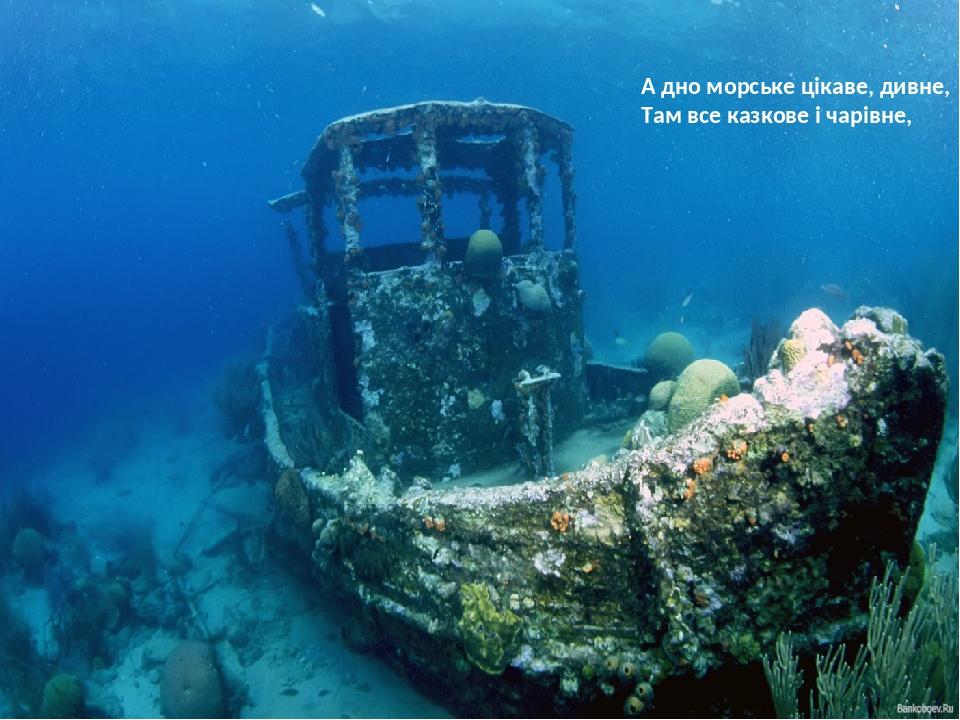 А дно морське цікаве, дивне, Там все казкове і чарівне,