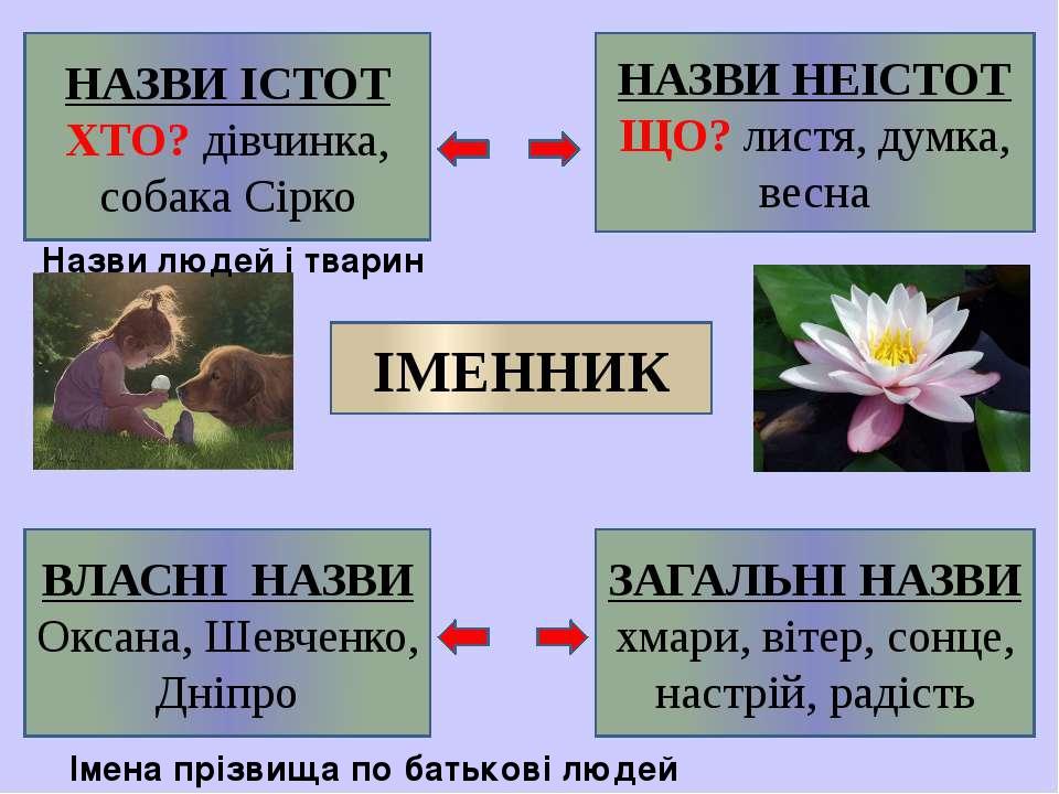 Назви людей і тварин Імена прізвища по батькові людей