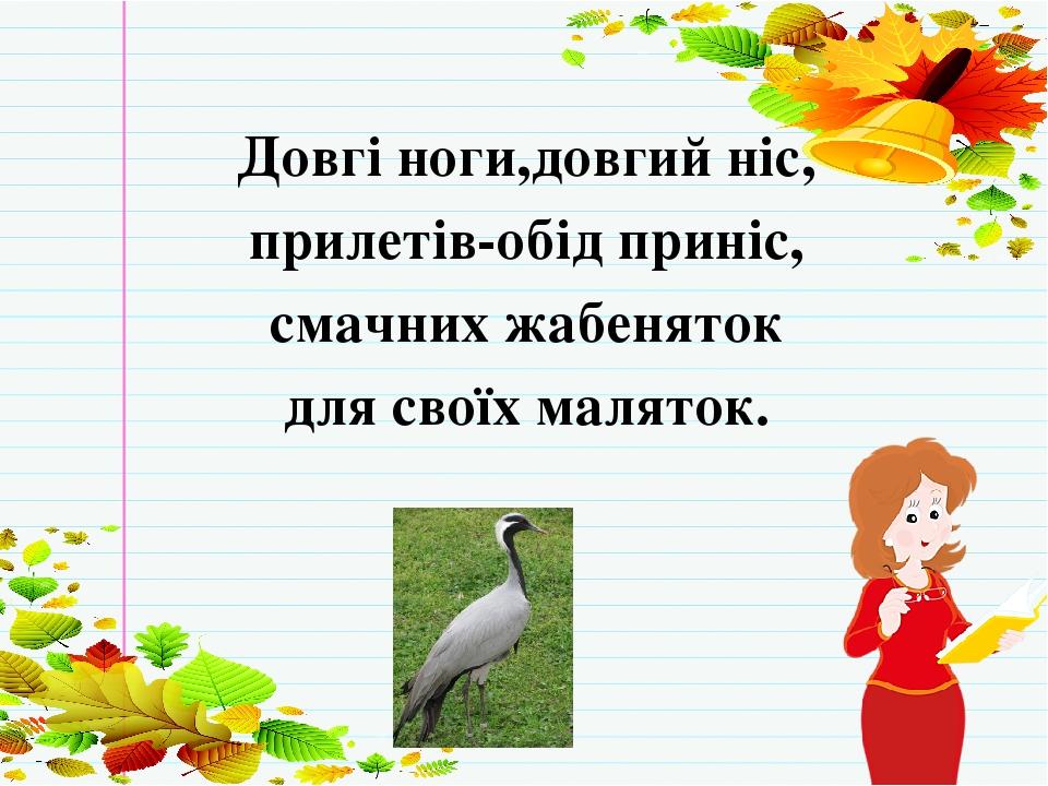ЗАГАДКА Довгі ноги,довгий ніс, прилетів-обід приніс, смачних жабеняток для своїх маляток.