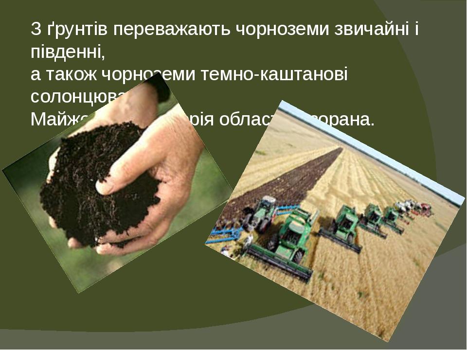 З ґрунтів переважають чорноземи звичайні і південні, а також чорноземи темно-каштанові солонцюваті. Майже вся територія області розорана.