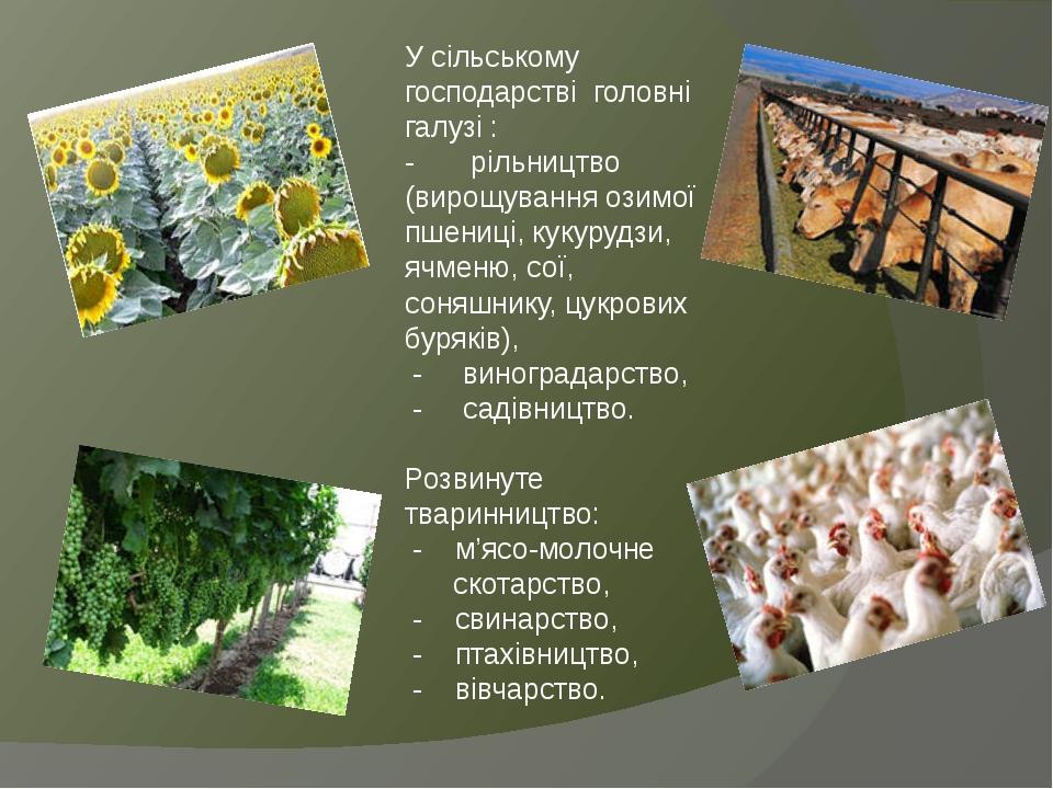 У сільському господарстві головні галузі : - рільництво (вирощування озимої пшениці, кукурудзи, ячменю, сої, соняшнику, цукрових буряків), - виногр...