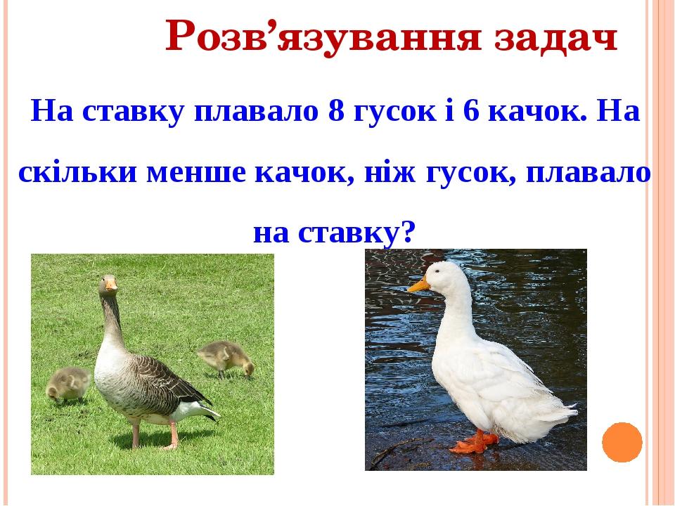 Розв'язування задач На ставку плавало 8 гусок і 6 качок. На скільки менше качок, ніж гусок, плавало на ставку?
