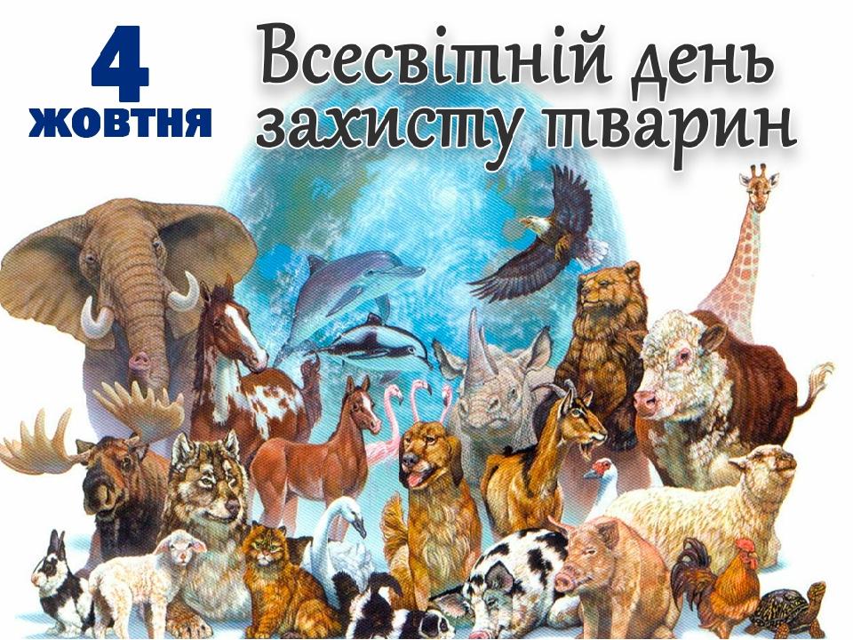 Бесіда до Дня захисту тварин ( 4 жовтня) для учнів початкової школи.