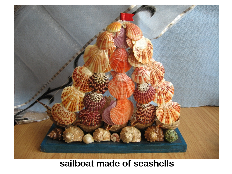 sailboat made of seashells